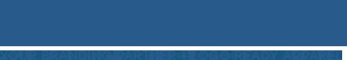 Blue Generation logo